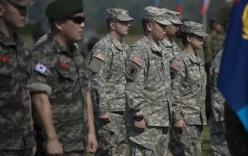 Việt Nam tham dự tập trận Hổ Mang Vàng của Mỹ và Thái Lan