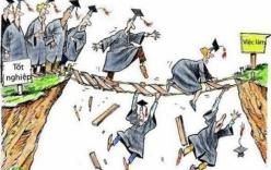 Bán trâu đi học, ra trường tân cử nhân giấu bằng đi làm công nhân