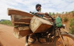 Campuchia dùng tên lửa chống nạn phá rừng