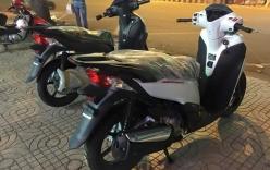 Loại xe máy nào hay bị mất cắp nhất tại Việt Nam?