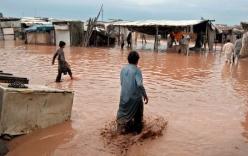 Mưa như trút nước tại Pakistan và Kashmir, 53 người thiệt mạng