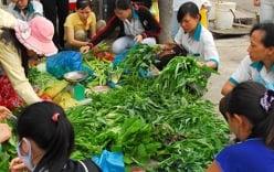 Thực phẩm bẩn bán tràn lan chợ đầu mối