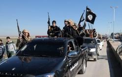 IS tấn công nhà máy xi măng, bắt cóc 250 dân thường Syria