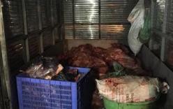 Gần 4 tạ thịt lợn không qua kiểm dịch bị bắt giữ