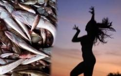 Bộ ảnh thể hiện nỗi đau cá chết tại 4 tỉnh miền Trung