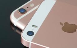 Apple dự báo doanh thu iPhone tụt dốc lần đầu tiên sau 13 năm