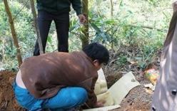 Bé sơ sinh ở Thanh Hóa suýt bị chôn sống
