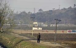 Nạn đói đáng báo động tại Triều Tiên