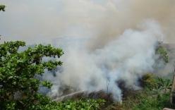 Cháy lớn ở đồng cỏ sau trường Cao đẳng, hàng trăm người hoảng loạn