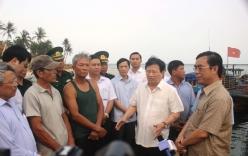 Phó Thủ tướng Trịnh Đình Dũng: Thuê chuyên gia nước ngoài tìm nguyên nhân cá chết