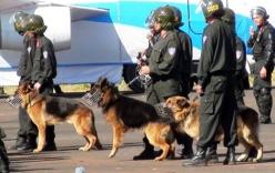 Hơn 100 cảnh sát cùng chó nghiệp vụ bao vây, đột kích phá ổ ma tuy