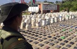 8 tấn ma túy bày la liệt sau đợt đột kích của cảnh sát Colombia