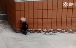 Người đi xe máy lao vào tường vì mải nhìn điện thoại