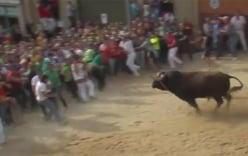 Video: Bò tót nổi điên vì bị hàng trăm người chọc tức giữa phố