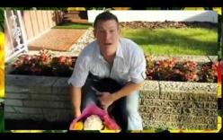 Video: Phản ứng của các ông chồng khi biết mình sắp sửa trở thành cha
