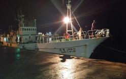 Hàn Quốc bắt 2 ngư dân Việt Nam bị cáo buộc sát hại thuyền trưởng