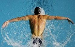 Hướng dẫn bơi bướm đúng kỹ thuật