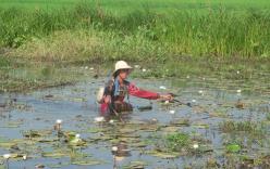 Vụ trúng đạn khi bắt cá ở Campuchia: Thêm nạn nhân tử vong