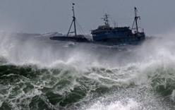 Công điện hỏa tốc ứng phó với cơn bão số 1- bão Mirinae