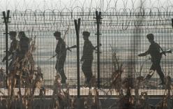 Triều Tiên tố Hàn Quốc dùng loài rắn để tấn công nước này