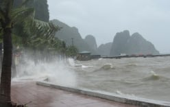 Đêm ngày 27/7, bão số 1 giật cấp 11 đổ bộ vào Quảng Ninh