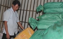 Hơn 8 tấn cá đông lạnh ở Hà Tĩnh nhiễm chất độc