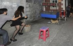 Chân dung tên trộm chuyên giở trò đồi bại với nữ chủ nhà