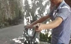 Nghệ An: Nhóm thanh niên tay không bắt rắn sọc dưa hơn 2kg tại xóm trọ