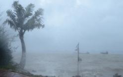 Tin mới nhất về vùng áp thấp trên khu vực Biển Đông