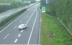 Video: Tài xế liều lĩnh lùi xe suốt 1 km trên cao tốc