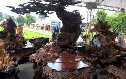 Giới đại gia Hà thành xôn xao trước bộ bàn ghế gỗ nu trên 1 tỷ đồng