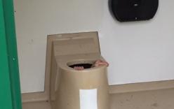 Thanh niên bị kẹt trong bể phốt vì cố cứu điện thoại