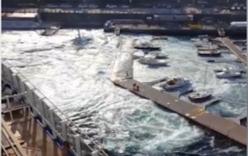 Du thuyền khổng lồ tạo