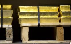 Nhân viên trộm vàng bằng cách giấu trong...hậu môn