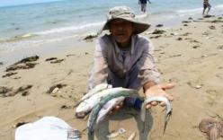 Ứng trước 3.000 tỷ bồi thường cho ngư dân 4 tỉnh miền Trung