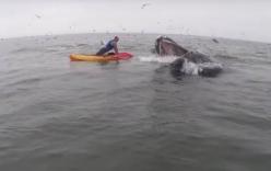 Cận cảnh tàu ngầm Nga nổi sát tàu đánh cá nhỏ