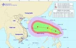 Cơn bão Sarika giật cấp 12 đang tiến vào Biển Đông
