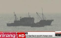 Triều Tiên bán quyền đánh cá cho Đài Loan