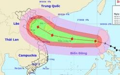 Đường đi của bão Sarika-bão số 7