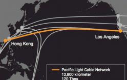 Facebook và Google hợp tác đặt cáp quang xuyên Thái Bình Dương