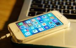 Quản lý Foxconn ăn cắp 5.700 iPhone