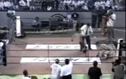 Trọng tài giục võ sĩ đá vỡ mặt đối thủ nằm sàn để nhanh xong việc