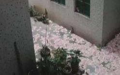 Bí ẩn cơn mưa tiền và hai xác chết ở Trung Quốc