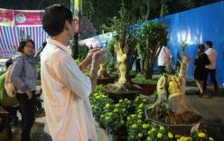 Video cận cảnh cây kiểng điêu khắc giá tiền triệu ở Sài Gòn