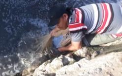 Video: Cao thủ quăng một phát chài bắt được hàng trăm con cá