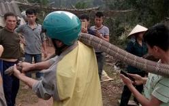 Rắn hổ mang khổng lồ ở Phú Thọ thuộc danh mục loài nguy cấp