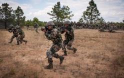Thông tin mới vụ 59 đặc nhiệm Ấn Độ biến mất bí ẩn khi chuyển quân