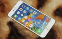 5 cách để màn hình trên iPhone hiển thị tốt hơn