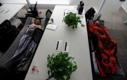 Nhân viên nhận lương 20.000 USD mỗi năm chỉ để ngủ