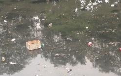 Mưa lớn, sông Tô Lịch kiêm luôn nhiệm vụ vận chuyển rác thải